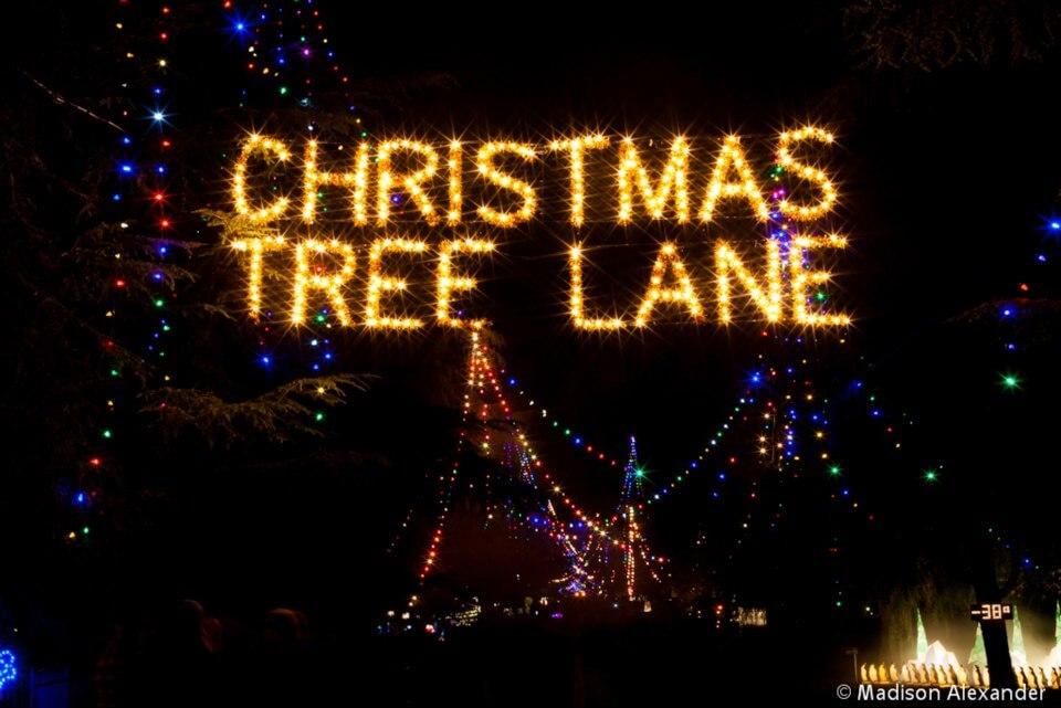 Christmas Tree Lane FresnoFamilycom